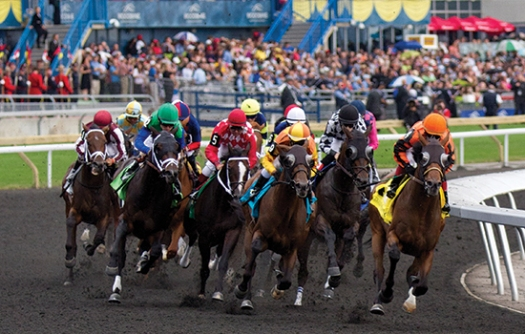 Horse-Racing-Queens-Plate-Woodbine